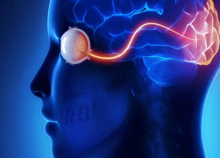 Neuralink y el objetivo de conectar nuestros cerebros a computadoras