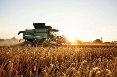 En México hay 2.4 millones de personas que trabajas en sector agropecuario