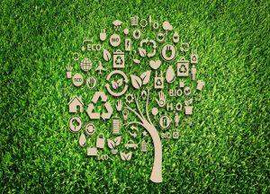 Estudio en temas de sustentabilidad incluyó a empresas de Perú, Chile, Ecuador y Colombia.