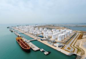 De oro negro a oro verde: Singapur cambiará de matriz petrolera a centro ecológico